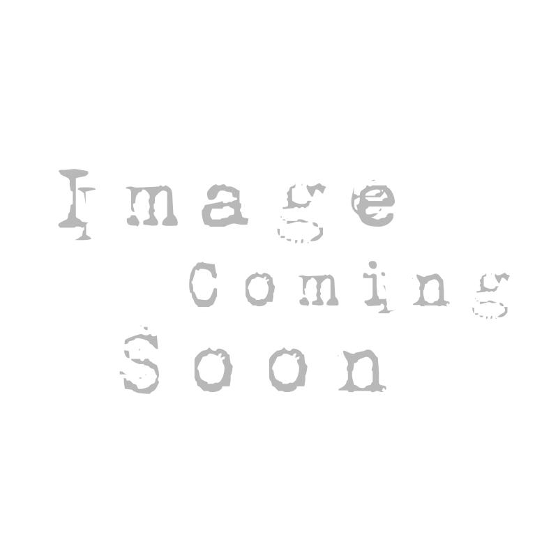 Maison Margiela Future Replica Sneaker White